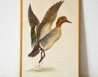 Beautiful vintage painting featuring a teal