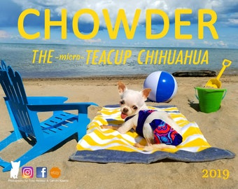 Chowder The micro Teacup Chihuahua by ChowderBeeBoutique on Etsy