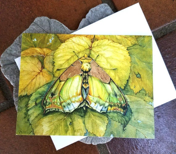 Holographic Green Moth Business Card Holder