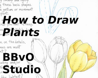 How to Draw Plants, Digital Download, Tulip, Instant Download, DIY Printable, Botanical Art, How To