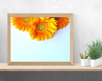 Printable Wall Art, Styled Stock, Stock Photo, Flower Stock Photo, Floral Wall Art, Flower Styled Stock, Printable Flower Wall Art
