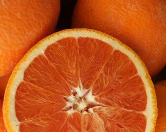 Cara Cara Red Navel Sweet Orange Early Sweet Juicy Fruit Citrus Tree Plant (*Cant Ship: Az Ca La Tx)