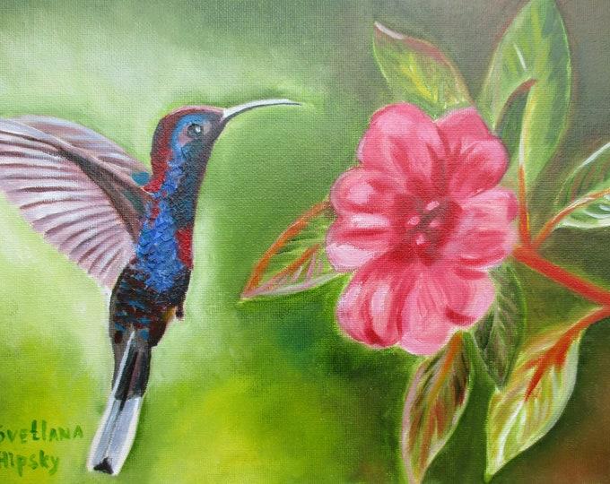 Hummingbird and pink flower