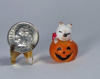 "Mini Kitten in Jack o lantern 3/4"" h. Halloween dollhouse 1:12 decor cat in pumpkin autumn decoration shadow box, trick or treat, tiny cat"
