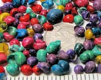 Tiny dyed littorina seashells (1 tsp = 100+ shells) mini colored snail shells,crafts, beach decor, kid's crafts, vase fillers, fairy gardens