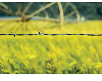 Fine Art Landscape Photography - Oregon Trail, Nature Photography, Barbwire, Industrial, Prints, Canvas