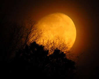 Harvest Moon - Matted Print