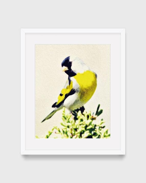 Peinture Doiseau Oiseau Peinture Chardonneret Jardin Anglais Etsy