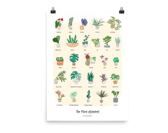 The Plant Alphabet Poster // P01