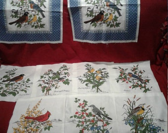 Quilting pieces to make a quilt for all bird lovers