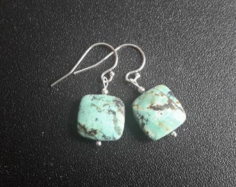 Sterling Silver Turquoise Jasper Earrings