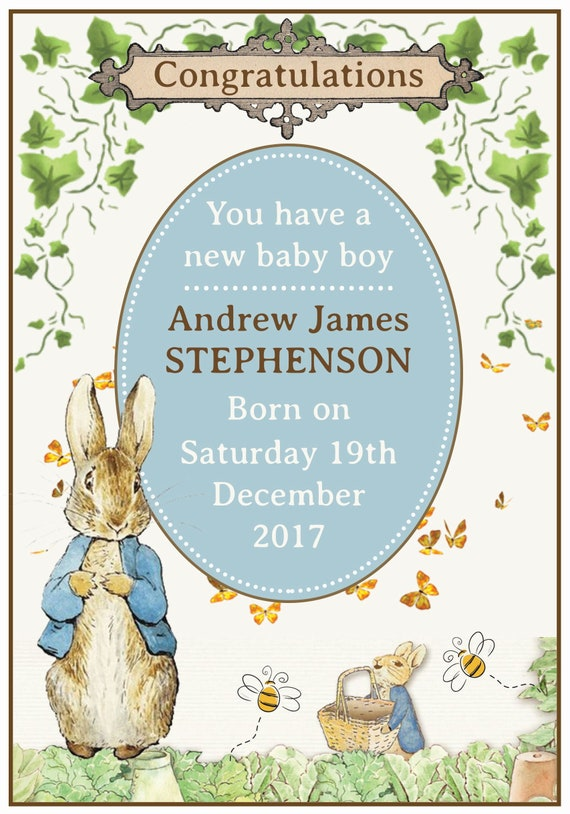 Peter Rabbit Baby Birth Card (Boy/Girl or Twins)