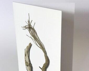 Abundance - Greeting Card