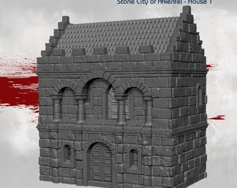 House 1 - DND - Dungeons & Dragons - RPG - Pathfinder - Tabletop - TTRPG - Arkenfel - Dark Realms - 32 mm