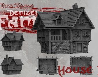 House 1 - DND - Dungeons & Dragons - RPG - Pathfinder - Tabletop - TTRPG - Demizens of Fantasy - Dark Realms - 32 mm