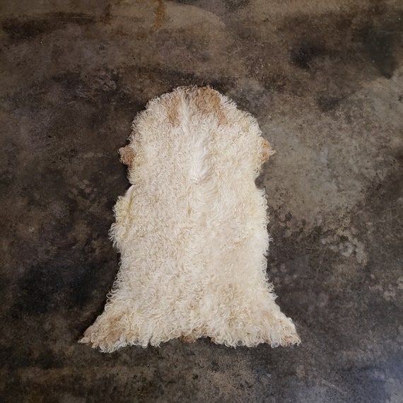 "35"" Small Decorative Genuine Sheepskin Spanish Curly Lambskin Fur Throw Rug Pelt or Hide"