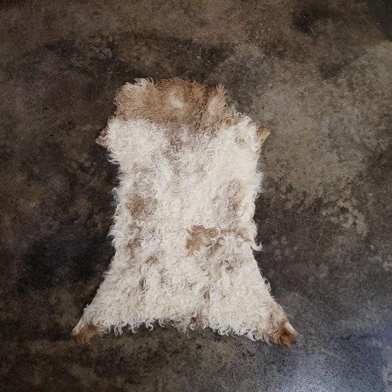 "34"" Small Decorative Genuine Sheepskin Spanish Curly Lambskin Fur Throw Rug Pelt or Hide"