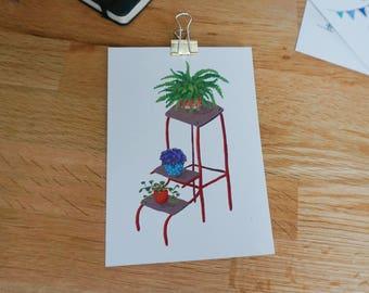 Postcard plant Staircase