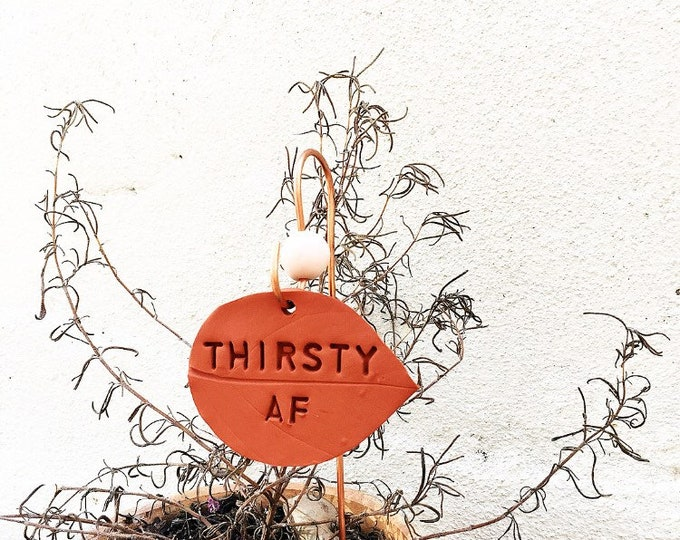Featured listing image: THIRSTY AF