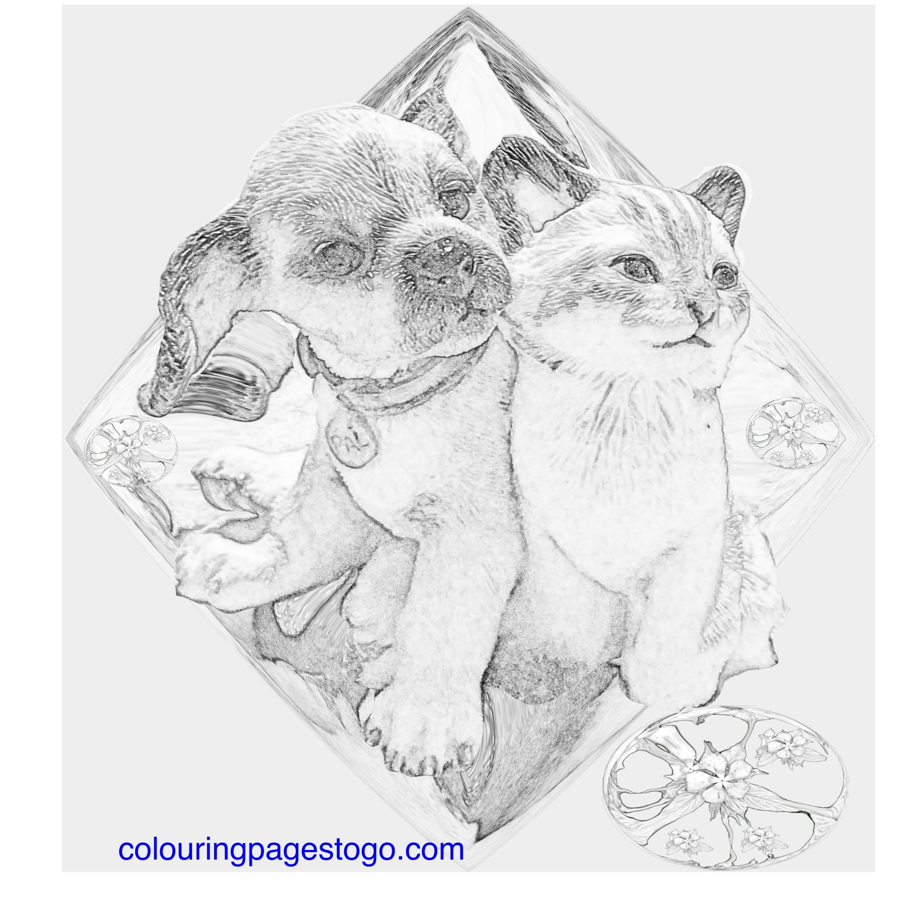 Grey Scale Cat and Dog Colouring pages, Grey Scale Flowers ...