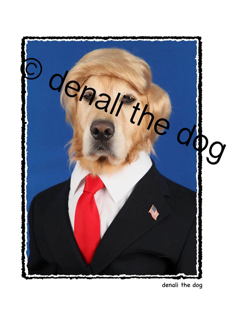 Donald Trump Donald Trump CardDonald Trump Happy Birthday image 0