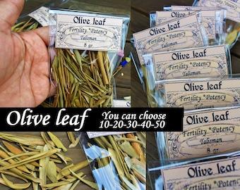 OLIVE LEAF HERB  of 10 20 30 40 50 bags Olive leaf  spell Olive leaf properties Wicca Started herbs Supplies for my shop