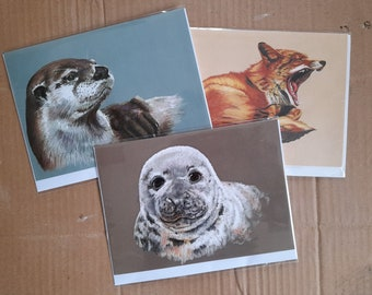 RSPCA East Winch Charity Cards Set of 3