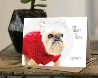 I'm Ready to Party - BRIDGETTE the Brussels Griffon - happy birthday, congratulations, Rescue dog