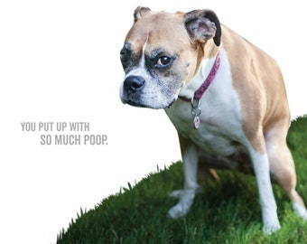 Dog Mom Card - You Put Up With So Much Poop - IZZY -  boxer - mother's day - dog rescue card