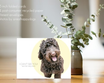 """JOEY """"I Can't See You... and that really stinks"""" - dog greeting card, minimal design, dog photography, Labradoodle, doodle"""