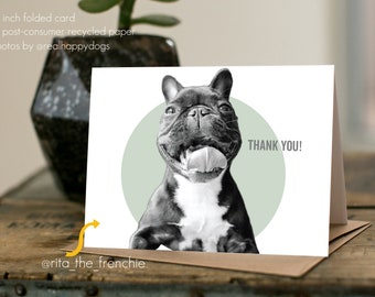 "RITA ""Thank You"" - dog thank you card, minimal design, dog photography, French Bulldog, Frenchie"