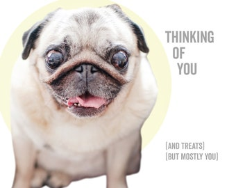 Thinking of you (and treats)(but mostly you) - dog greeting card, pug card