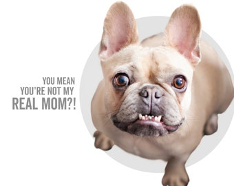 Dog Mom Card  - You Mean You're Not My Real Mom?! - POULLYA -  frenchie - mother's day