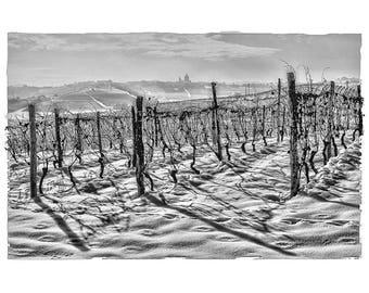 Winter in Alto Monferrato