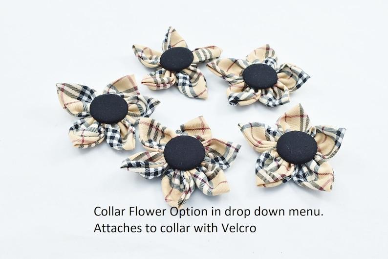 Designer Fashion Nova Check British Tan Tartan Dog Gifts New Puppy Berry Classical Plaid Dog COLLAR /& LEASH SET wCollar Flower Option