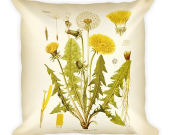 Dandelion Botanical Square Pillow