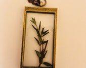 Pressed thyme resin neckl...