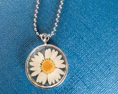 Real daisy resin necklace...