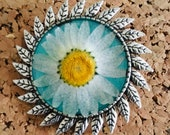 Pressed flower daisy pin...