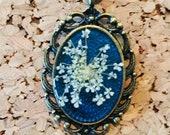 Queen Anne's Lace pre...