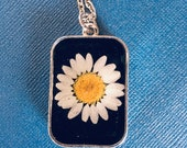 Real flower white daisy o...