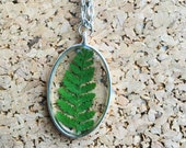 Oval silver real fern res...