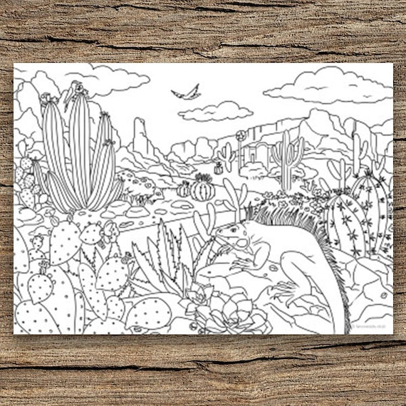 Desert Printable Adult Coloring Page from Favoreads ...