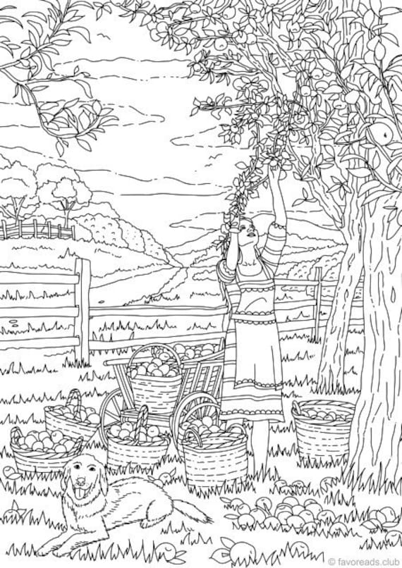 Harvest Time Printable Adult Coloring Page From Favoreads
