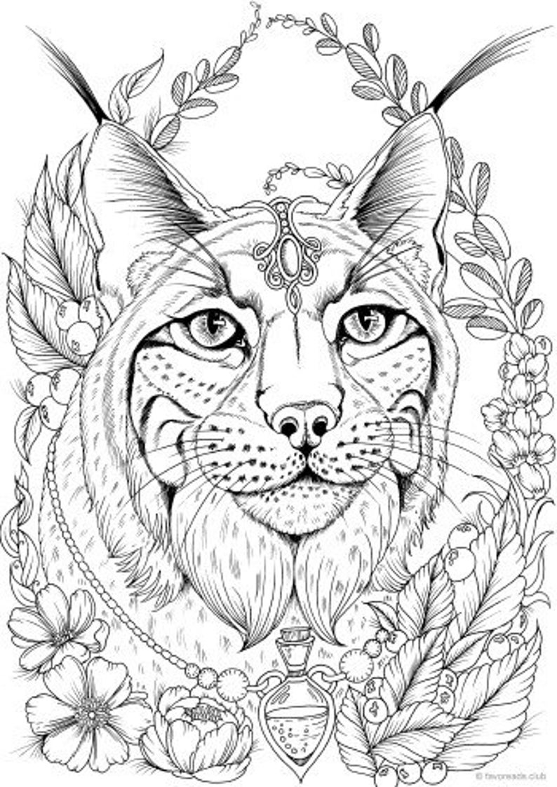 Lynx Printable Adult Coloring Page from Favoreads Coloring ...