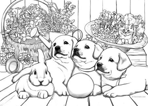 Puppies Printable Adult Coloring Page From Favoreads Etsy