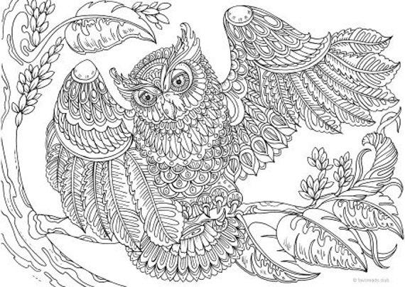 Owl with a Twist - Printable Adult Coloring Page from Favoreads (Coloring  book pages for adults and kids, Coloring sheets, Coloring designs)