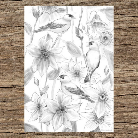 Birds And Flowers Printable Adult Coloring Page From Etsy