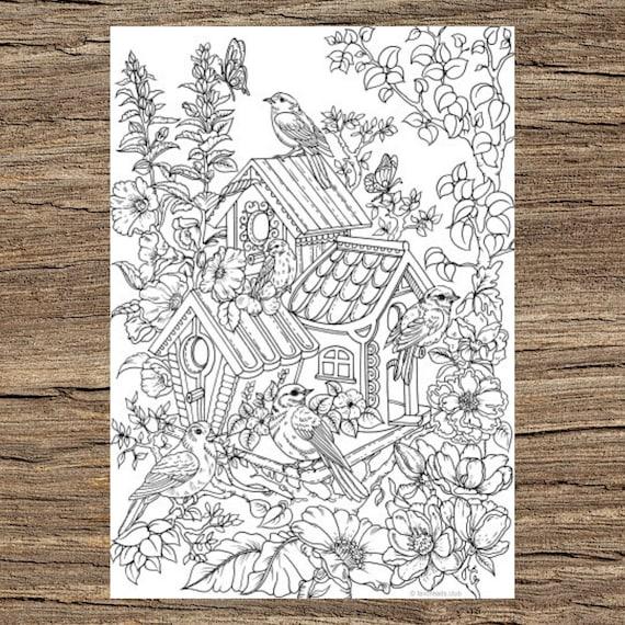 Free printable house coloring sheets   Coloring sheets, Bird ...   570x570