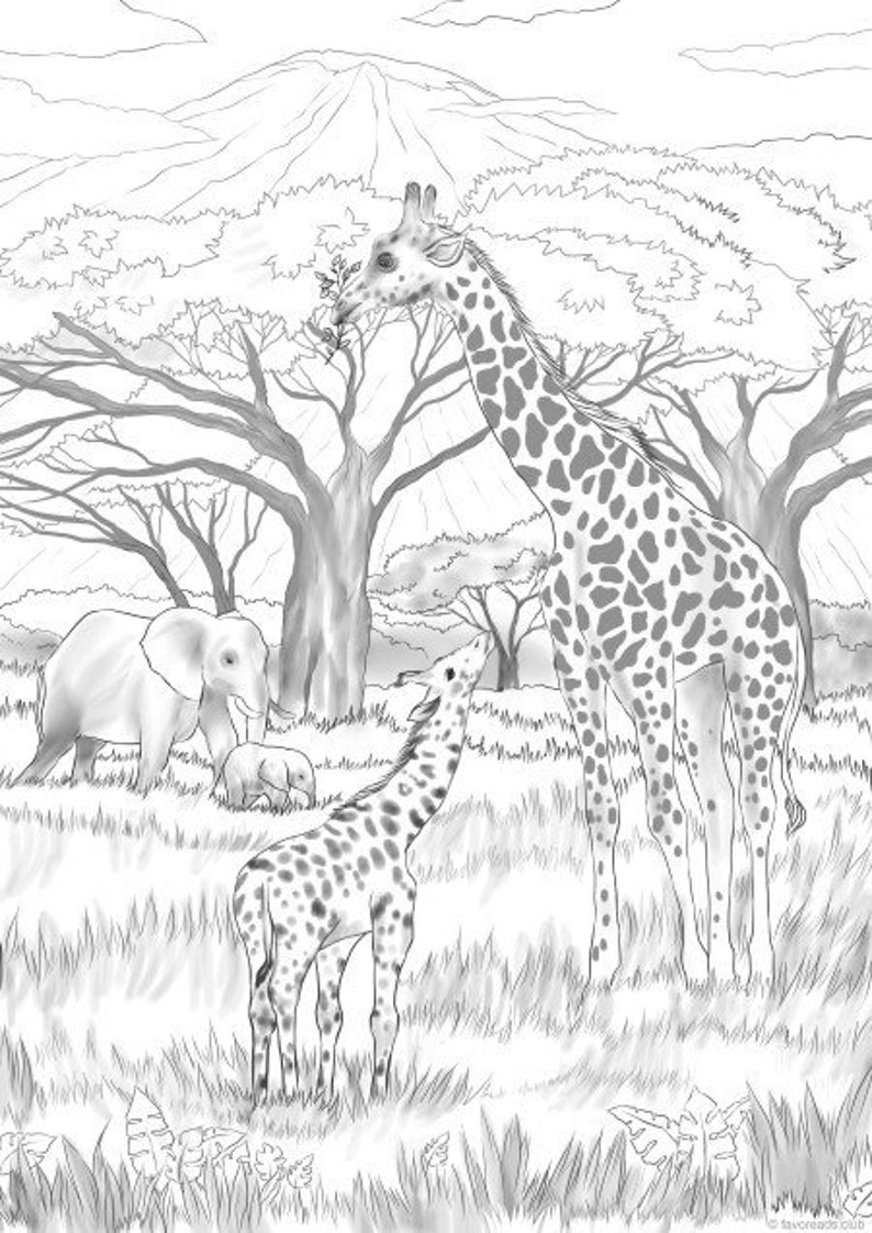 Safari Printable Adult Coloring Page from Favoreads | Etsy